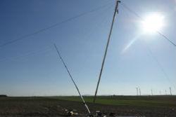 Falcone per palo da 10, 20 e 30 metri